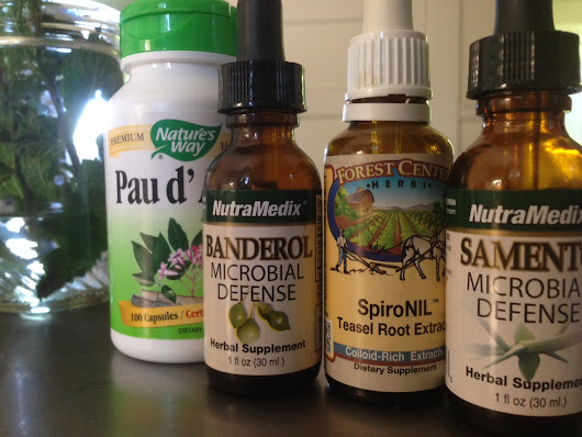 ADVENTURES in HERBAL TREATMENT FOR LYME