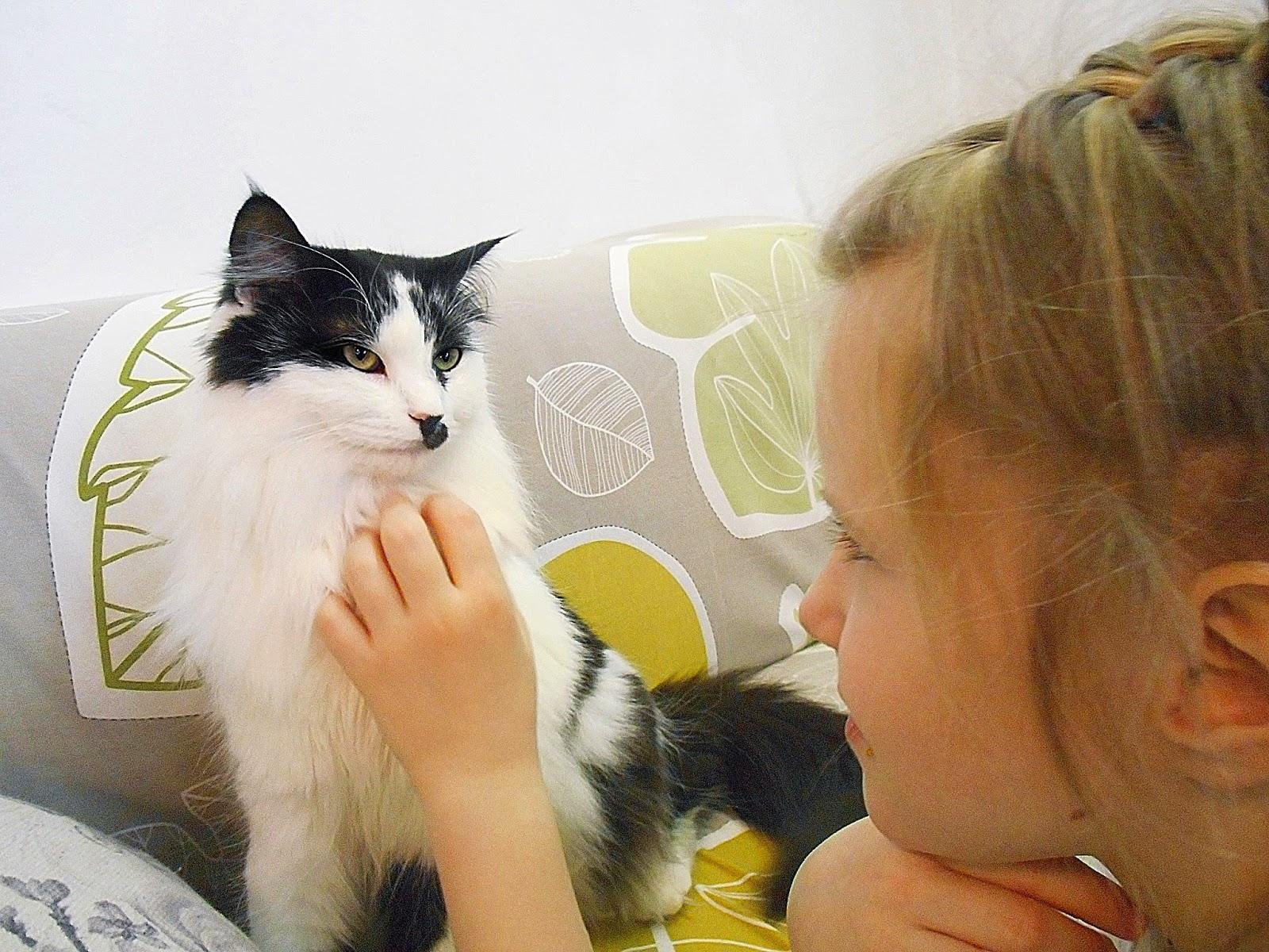 Настя и Женевьева, жительница кото - кафе