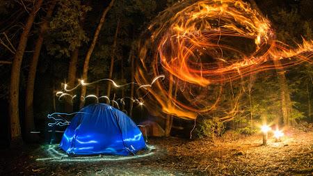 Camping, Forest, Night, Lights, Creativity UHD