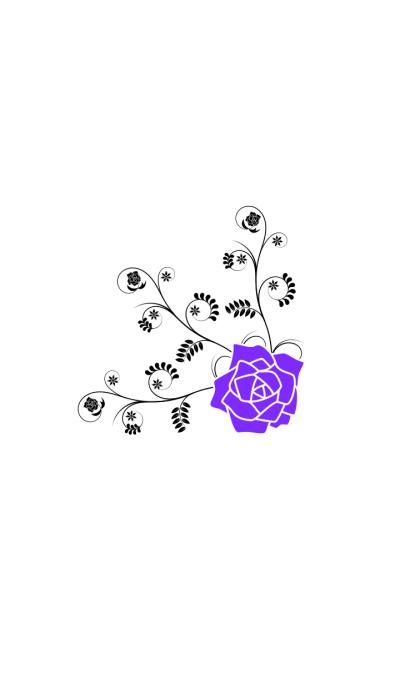 Classic Purple Rose