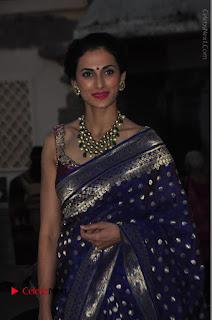 Model Shilpa Reddy Stills in Purple Silk Saree at Gudi Sambaralu 2017 Sri Ramachandra Swami Temple  0024.JPG
