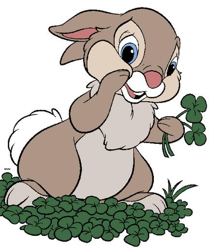 conejo dibujo a color im genes a color de conejos