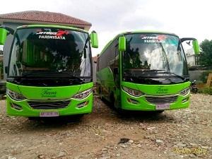 Sewa Bus Untuk Mudik, Sewa Bus Medium Untuk Mudik