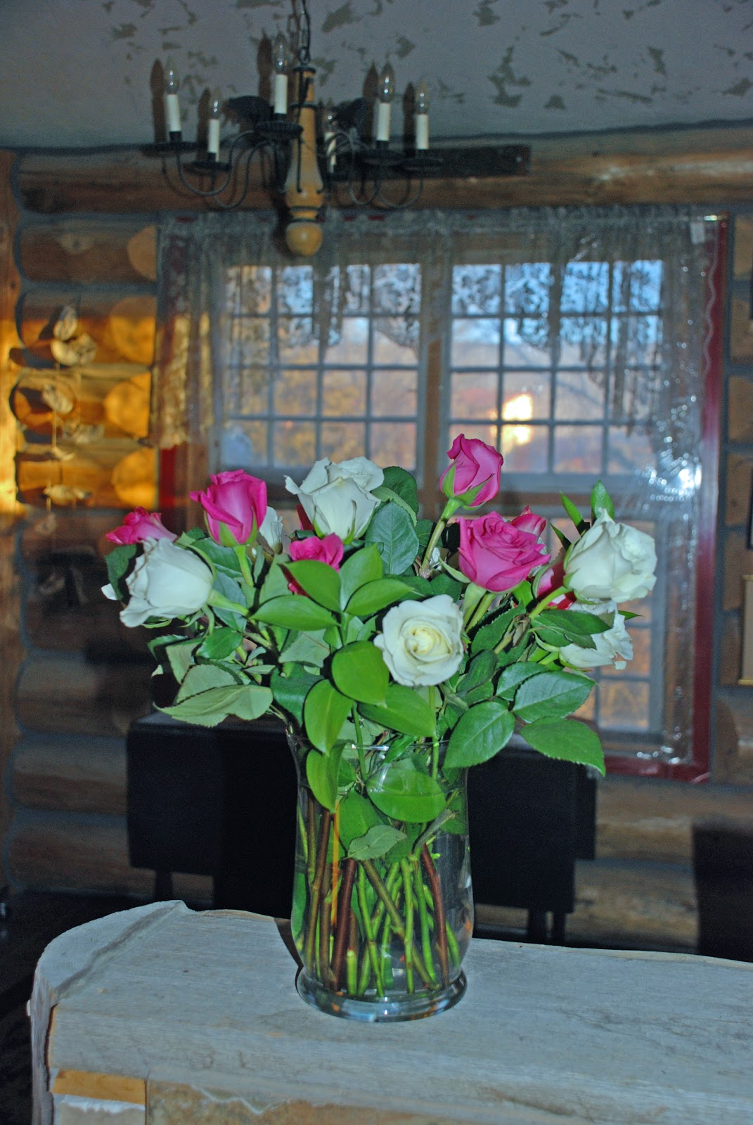 Ironside Bird Rescue Inc Beautiful Flowers