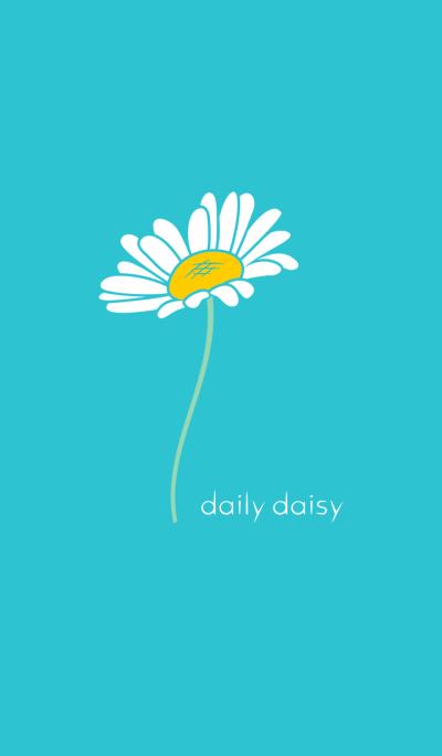 daily daisy .