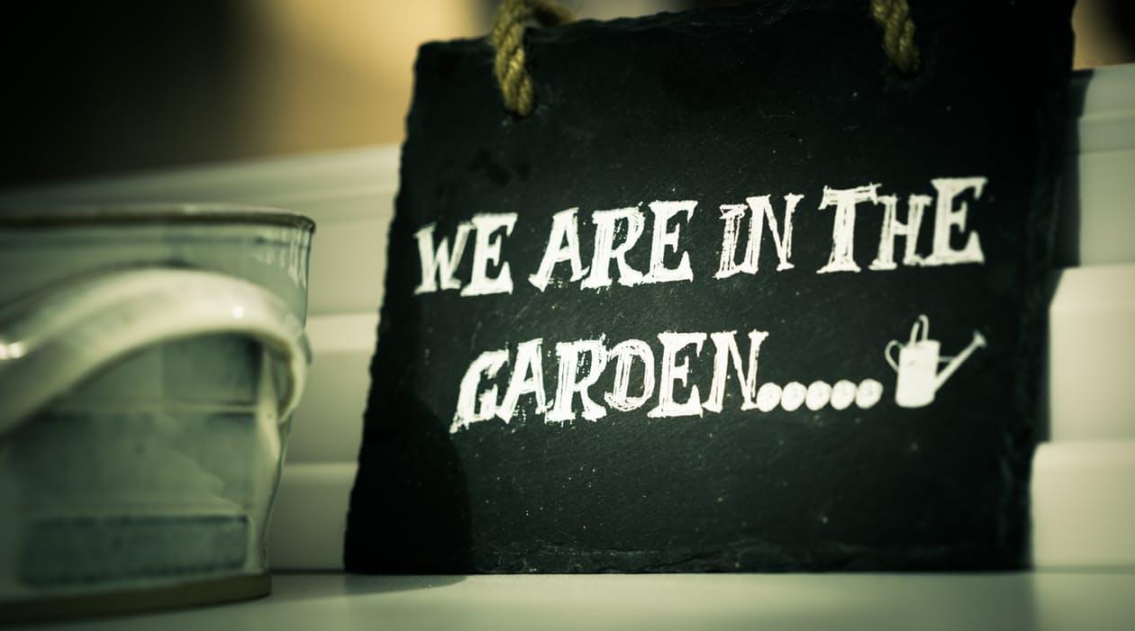 in garden jpeg