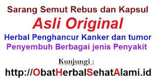 Harga Jual khasiat manfaat sarang semut asli papua original kapsul+REBUSAN