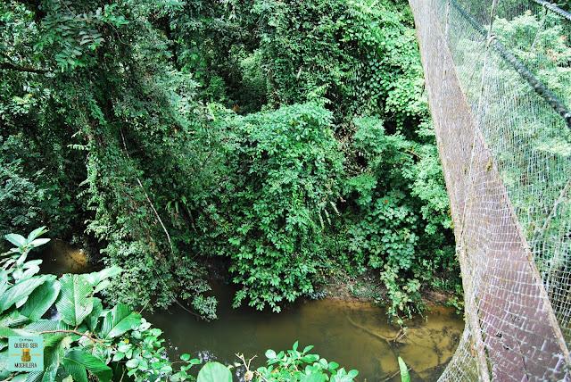 Canopy Skywalk en Parque Nacional del Gunung Mulu (Borneo, Malaysia)