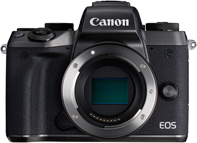 The Canon EOS M5 is one of the best mirrorless cameras in 2017