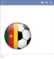 Cameroon football emoticon