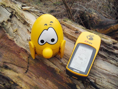 The Eggman Cache on a log