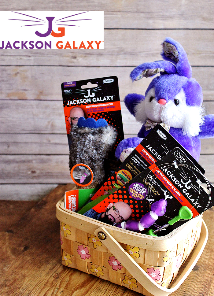 Discover #JacksonGalaxyCatPlay by Petmate toys and enrichment tools at PetSmart and unleash your cat's inner Mojito! Foster a cat's natural instincts to hunt, catch, and kill with these colorful and engaging cat toys! #Sponsored