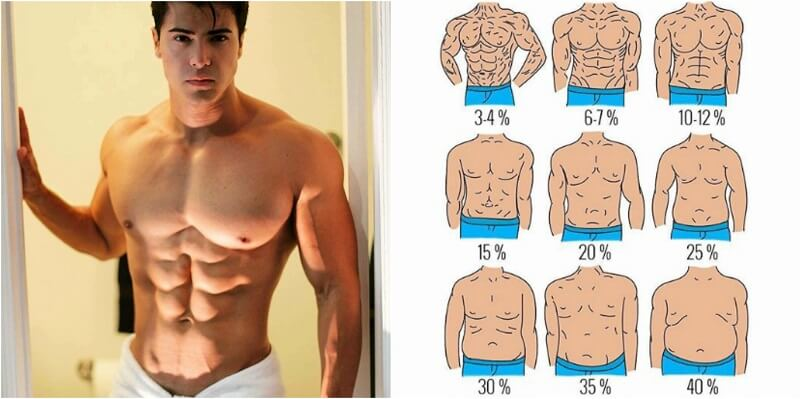 What is Your Body Fat Percentage (BF)?! - Runner Rocky - body fat chart