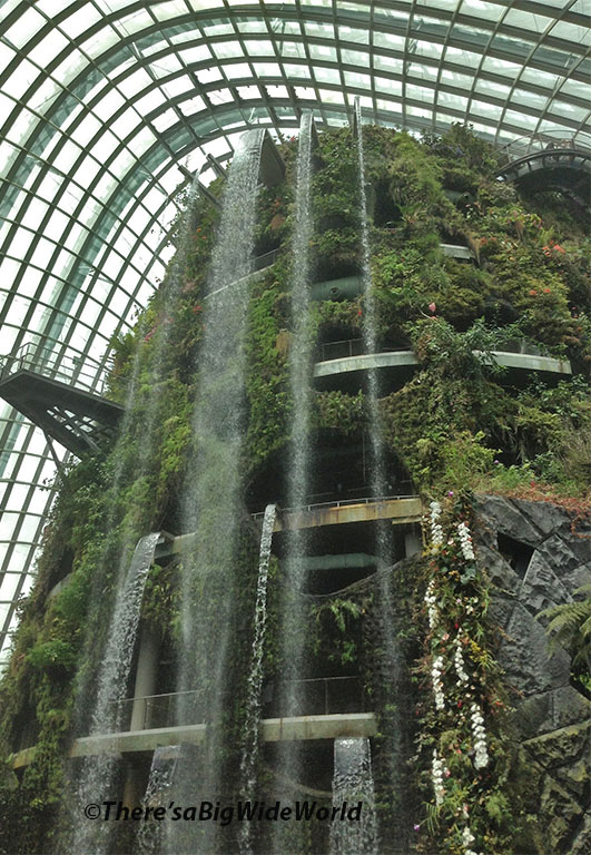 gardens by the bay singapore cloud forest the tropical rainforest conservatory complete with waterfalls and white orchids