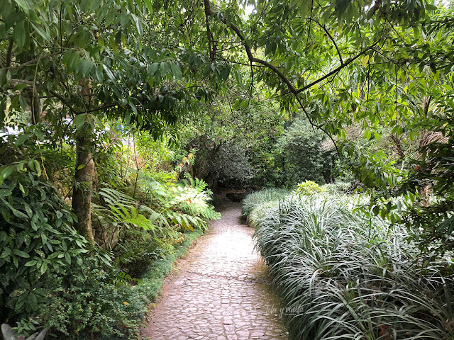 Jardines en Sintra