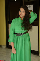 Geethanjali in Green Dress at Mixture Potlam Movie Pressmeet March 2017 066.JPG