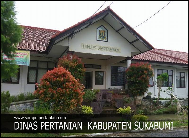 Alamat Dinas Pertanian Kabupaten Sukabumi