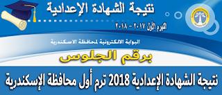 ظهرت الآن..برقم الجلوس نتيجة الشهادة الاعدادية الترم الأول 2018 محافظة الأسكندرية