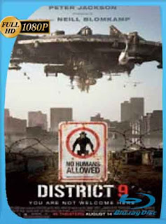 Sector 9 (2009) HD [1080p] Latino [GoogleDrive] SilvestreHD