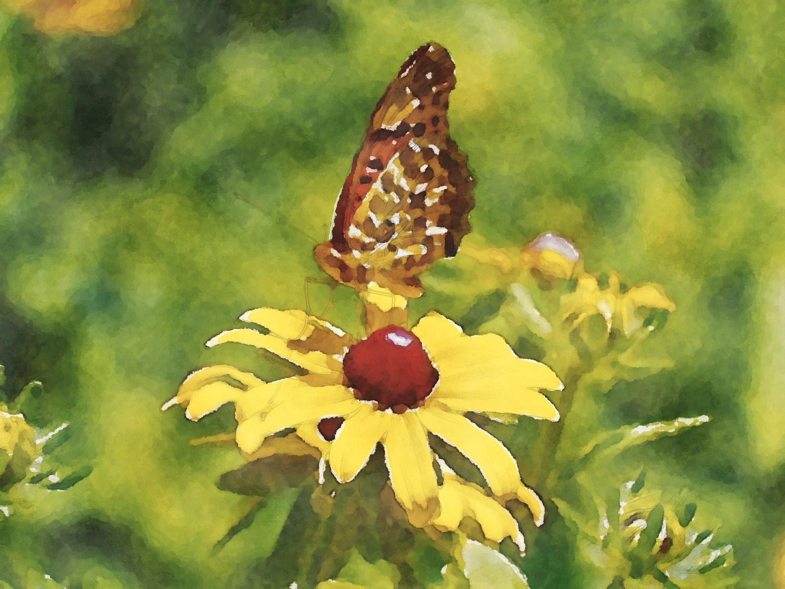 水彩画の花と蝶