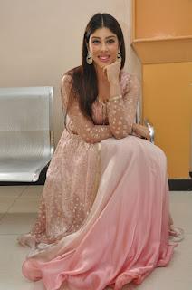 Actress Aditi Singh Latest Stills in Designer Dress at Guppedantha Prema Pressmeet  0028