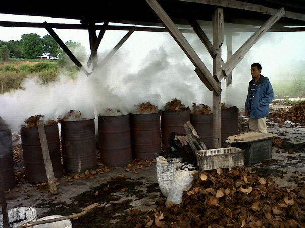 Tempurung kelapa dibakar untuk dijadikan arang dan dikirim ke Medan.