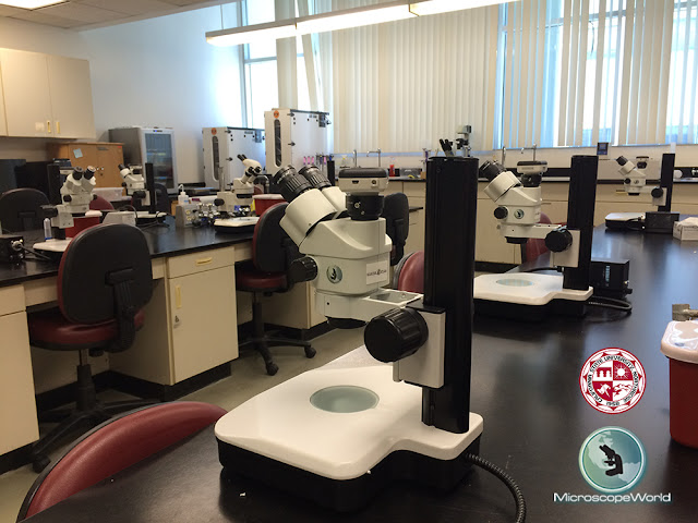 WiFi wireless microscopy camera on Richter Optica S6 stereo zoom microscope.