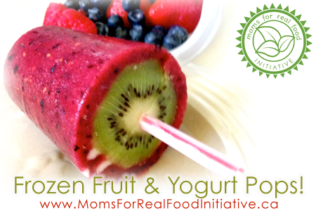 Homemade Frozen Fruit and Yougurt Pops Moms For Real Food Initiative