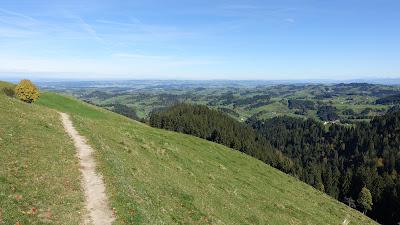 Weg bei Ober Scheidegg auf gut 1200 m