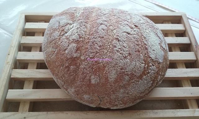 Jim Lahey's no-knead bread - Pane senza impasto di Jim Lahey
