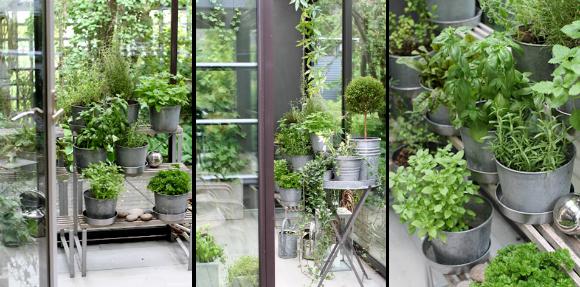 Metronome Herb Garden Oasis