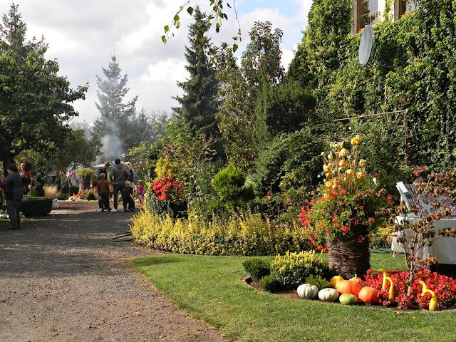 Ogrodnicy w swoich ogrodach przygotowują festyn tematyczny.