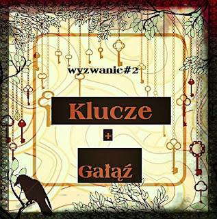 http://hubka38.blogspot.com/2016/05/wyzwanie2-plus-podsumowanie_8.html