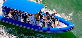 The Dolphin – a high speed RIB (Rigid Inflatable Boat)