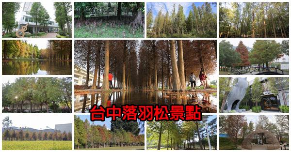 台中賞落羽松景點,找時間出門散散步吧,持續更新