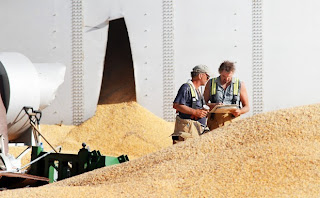OSHA fines the North Central Farmers Elevator in Ipswich for exposing workers to grain engulfment