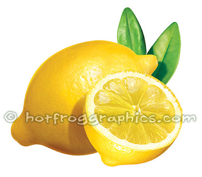 illustration of lemons on white background