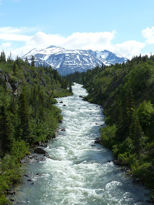 View of the river from the middle of the Yukon Suspension Bridge on an Alaska cruise excursion