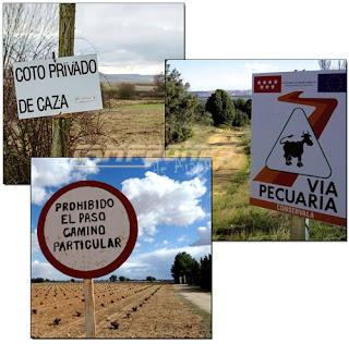 Vía Pecuaria Senderismo Aranjuez