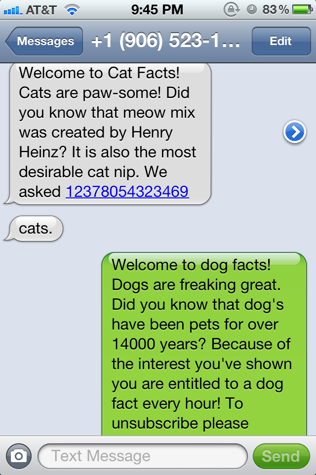 inside scoop from a cat facter