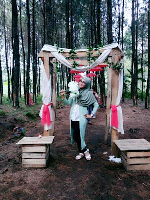 Spot selfie hutan pinus