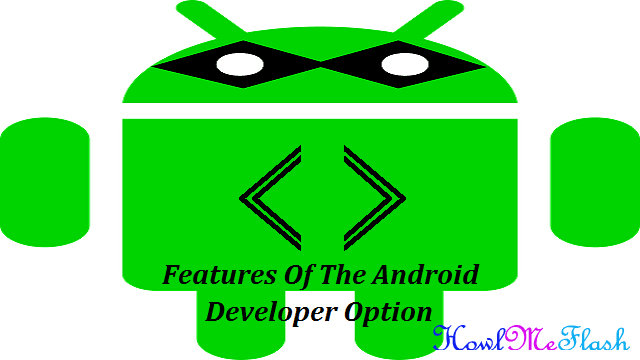 Features Of The Android Developer Option