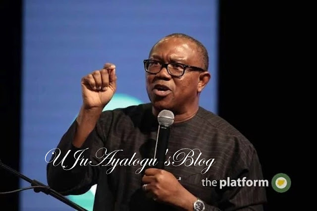 'He Should Leave The Senate' – Peter Obi Slams Former Yobe Governor Over 'Sex Tape'