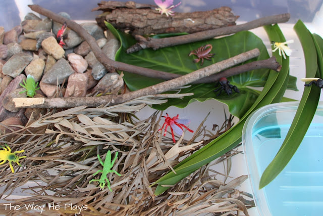 Insects in leaves, rocks and sticks for small world play