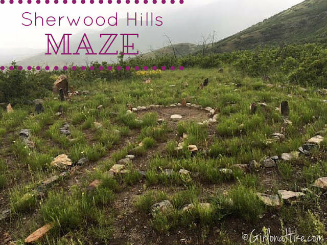 Sherwood Hills Maze