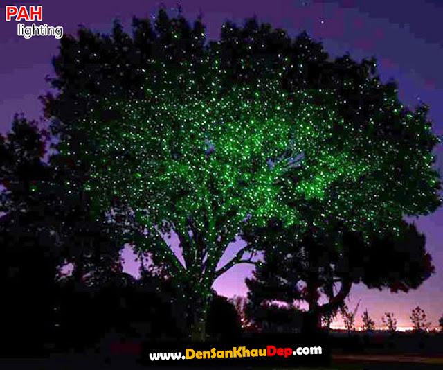 Máy chiếu laser trang trí cây cảnh