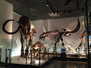 Museum Sains Nasional - Tokyo