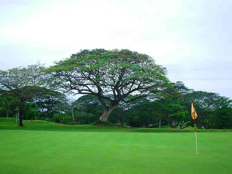 Philippine Golf Course Zamboanga Golf Course And Beach