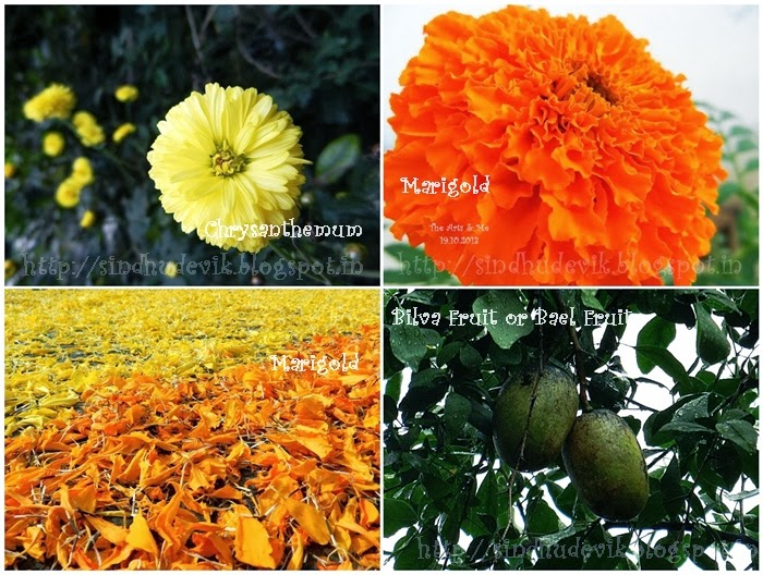 Natural Holi Colours - Yellow & Orange tones - Chrysanthemun, Marigold and Bael Fruita