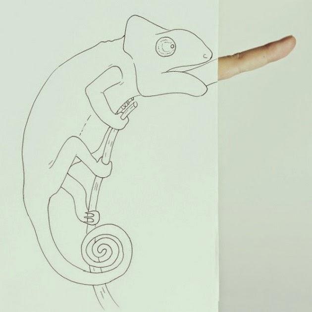 adorable animal illustrations
